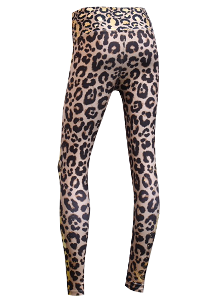 600×404 cheeta back